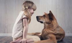 AH,  SE OS ANIMAIS PUDESSEM FALAR ............