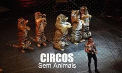 A FAVOR DOS CIRCOS - mas, sem animais
