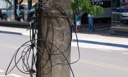 Projeto de lei aprovado obriga retirada de cabos e fios soltos em postes