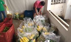 Voluntários ajudam na distribuição de alimentos do PAA a idosos do Cras Centro e Umuarama