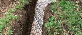 Mosaicos do Império Romano são encontrados praticamente intactos em vinhedo na Itália