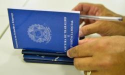 Serviços geram quase 50 mil empregos com carteira assinada na região