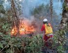 Combate a incêndios florestais recebe apoio do sindicato de postos de combustíveis