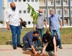Secretaria de Meio Ambiente de Birigui comemora o Dia da Árvore com plantio e distribuição de mudas