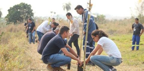 Dia da Árvore é comemorado com plantios na região