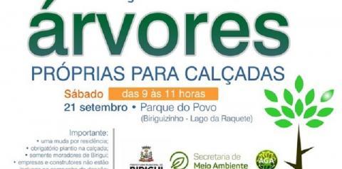 Doação de mudas acontece neste sábado, 21 de setembro, no Parque do Povo