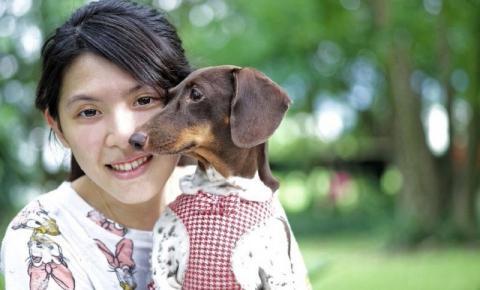 Humanos projetam suas aflições e estressam animais domésticos