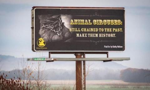 PETA exige fim da exploração animal em circo nos EUA
