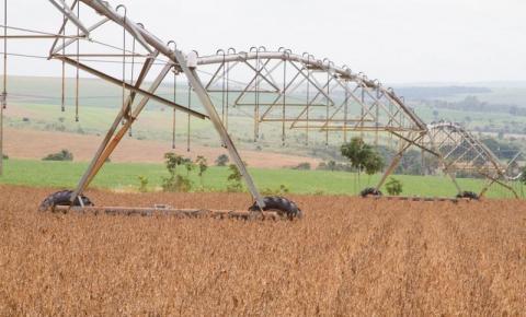 IBGE reduz previsão e safra de grãos deve crescer 1,9% neste ano