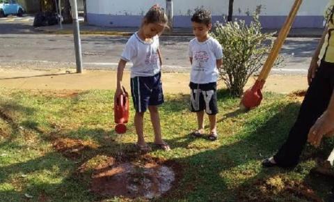 Secretaria de Meio Ambiente divulga programação especial para Semana da Árvore