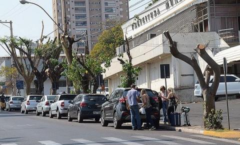 Plenário quer explicações sobre poda de árvores em avenida