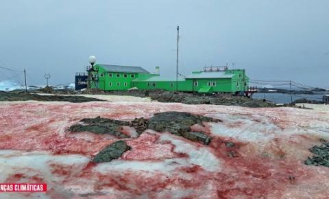 Fenômeno relacionado ao clima faz a neve ficar vermelha na Antártida