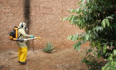 XÔ DENGUE: CCVZ continua com o trabalho de combate ao mosquito Aedes Aegypti