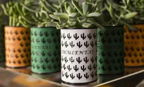 Dicas de presente: suculentas são entregues na sua casa em latinhas decoradas