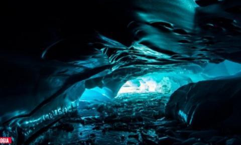 Criaturas estranhas são descobertas nas profundezas do gelo da Antártida