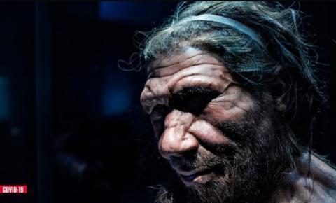 Herança genética dos neandertais pode ser crucial para enfrentar a COVID-19