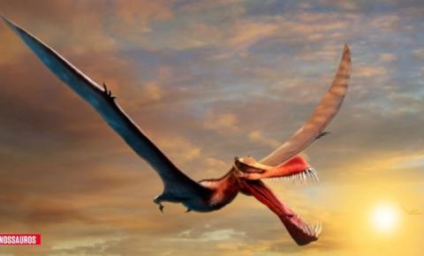 Pesquisadores australianos encontram fóssil de dragão da vida real