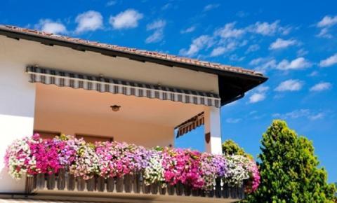 Saiba quais flores colocar na varanda para trazer boas energias