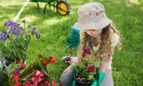 Veja como fazer um jardim para as crianças