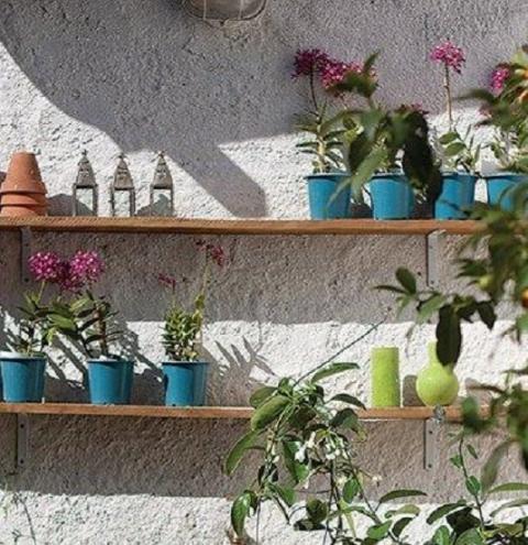 6 formas de usar plantas na vertical