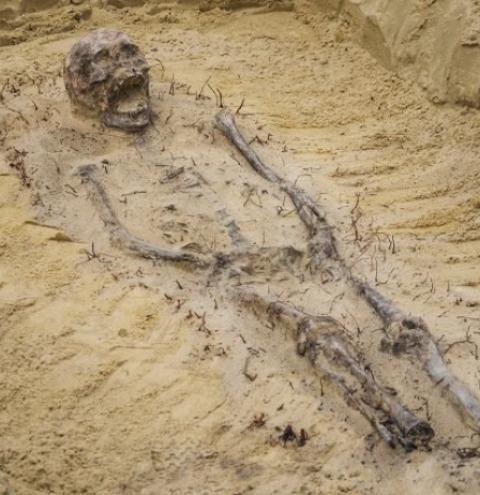 Esqueletos de crianças com moedas na boca são encontrados em cemitério do século XVI